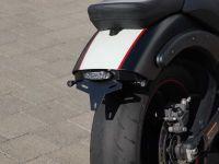 Kennzeichenhalter für Kawasaki Vulcan S (2015-2020)
