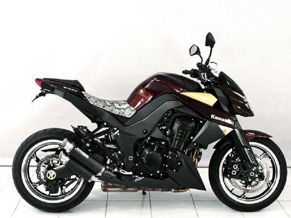 BODIS GPX2-S f. Kawasaki Z1000 (2014-2016)